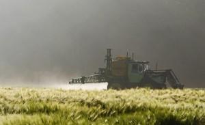 pesticidi-770x470