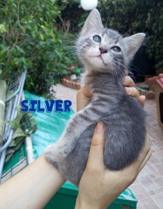 silver