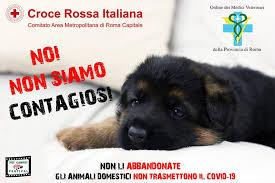 https://www.corriere.it/animali/20_marzo_17/coronavirus-via-campagna-noi-non-siamo-contagiosi-contro-l-abbandono-animali-64f8f13a-6827-11ea-9725-c592292e4a85.shtml