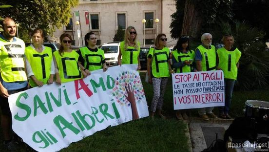 https://www.ilmessaggero.it/abruzzo/alberi_taglio_pescara_ambientalisti_assolti_news-5618859.html?fbclid=IwAR14JZvibG3Wph-wD86wIEAIV7pacloXSgot2IP5-5eYnk774JrlNZ4Km5c