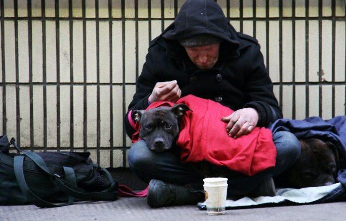 https://www.gcomegatto.it/aperto-a-milano-un-centro-per-senzatetto-con-animali/?fbclid=IwAR08gLlddejbqmsjIdtr4FRTiu27q-Pz1ECw5pAjDD4H_xLopIW8ca2Kx1Q